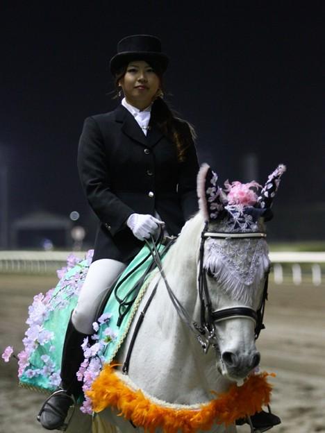 写真: 川崎競馬の誘導馬04月開催 桜Verその2-120409-21-large