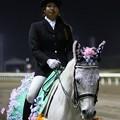 川崎競馬の誘導馬04月開催 桜Verその2-120409-21-large