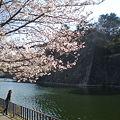 桜舞い散る中に忘れた記憶と
