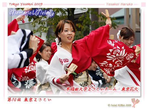 写真: 早稲田大学よさこいチーム 東京花火_01 - 第10回 東京よさこい