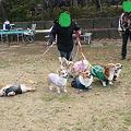 Photos: DSC03633