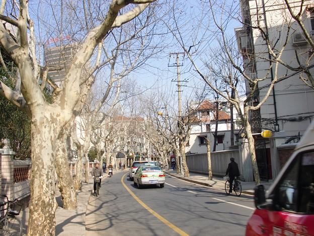 青空の上海