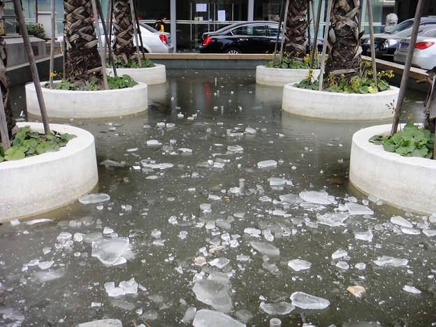 池に張った氷と車
