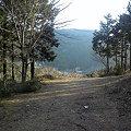 写真: 神山町、大粟山の散策路