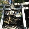 Photos: 世田谷線:宮の坂駅界隈_世田谷八幡宮-02a