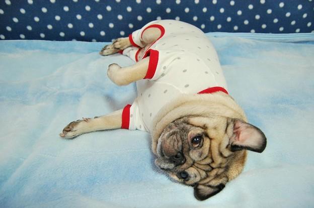おやすみ羊パジャマ*moscape