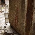 2月19日〜22日対馬・毘沙ノ鼻訪問の旅その2