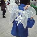 写真: 大道芸ワールドカップin静岡14