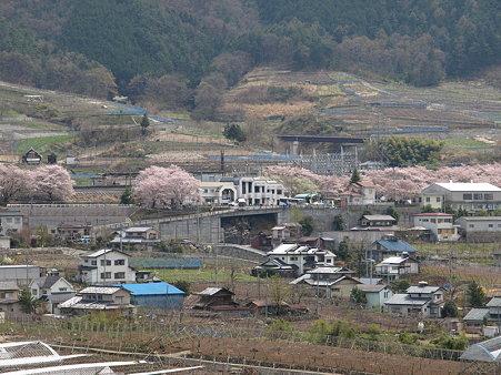 ぶどうの丘から駅を見て(勝沼ぶどう郷駅付近)2