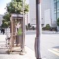 Photos: ぐにゃり