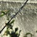 写真: 激しい雨 2014.6.29