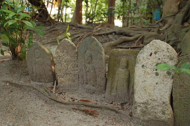 唐招提寺奥院 西方院 境内 DSC_1405