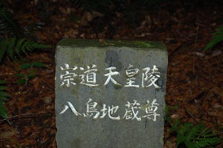 奈良 円照寺参道にて