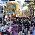 写真: 市民祭10