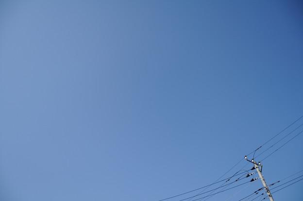 写真: 20100110_132214