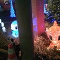 Photos: アクト青山スタジオのイルミネーション2009(8)
