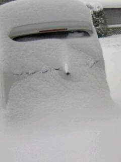 自宅で埋まる車20100204