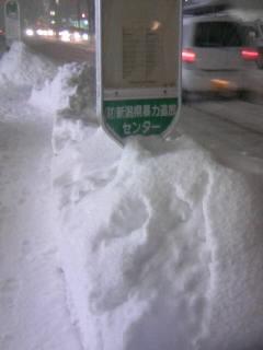 バス停の様子20100204