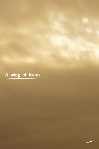 Photos: A wing of Ikaros.