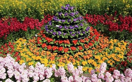 京都府立植物園56