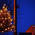 Photos: Christmas in Maine St. 12-12-09