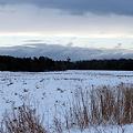写真: 72 Hours of Snow 1-3-10