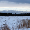 Photos: 72 Hours of Snow 1-3-10