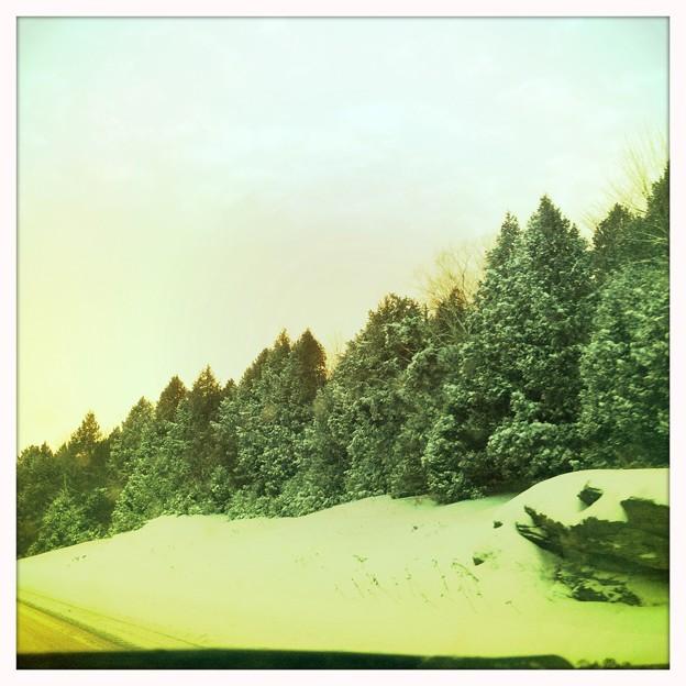 写真: Snow Stopped