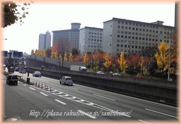 Photos: 新御堂筋