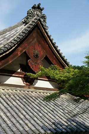 金剛寺の本堂