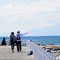 写真: 防波堤から見た景色