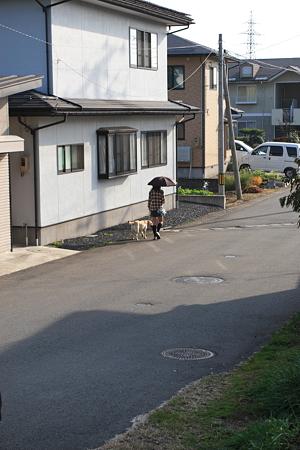 桜田西付近