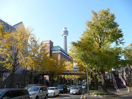091123-山下公園通 (8)