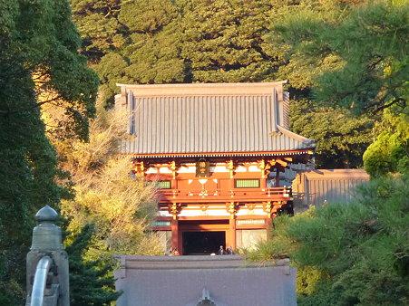 091204-八幡さま (1)