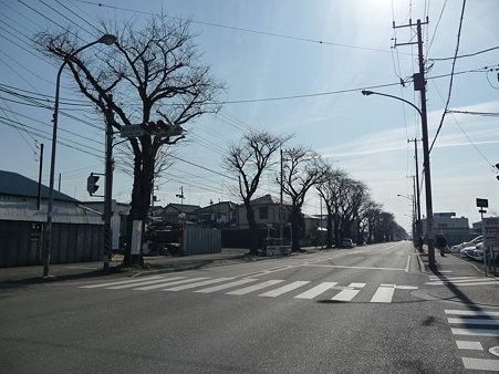 100120-海軍道路・上瀬谷ベース (6)