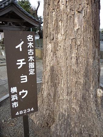 100120-7.宗川寺 (4)