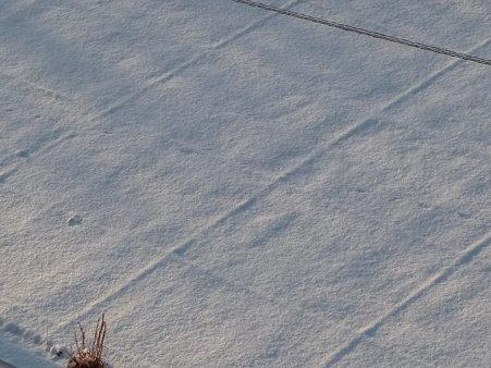 100202-雪 (6)