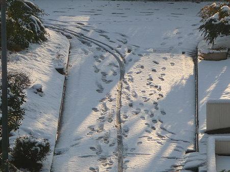 100202-雪 (8)
