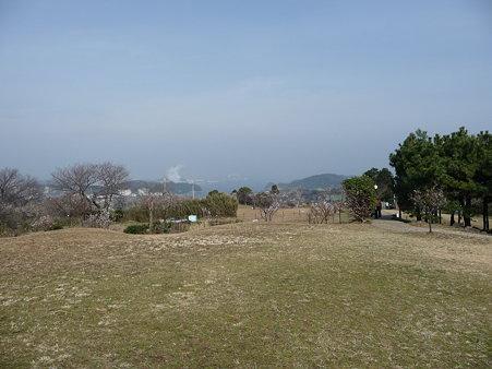 100301-田浦梅林 (57)