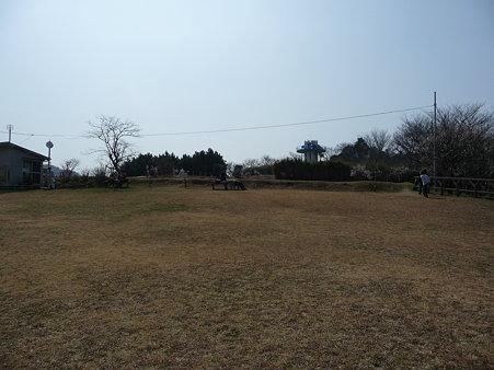 100301-田浦梅林 (54)
