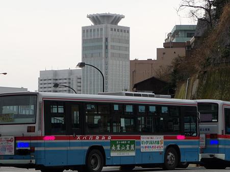 100301-横須賀ヴェルニー公園 (46)