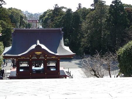 100311-八幡さま (36)