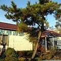 JR北海道・函館本線、大中山駅