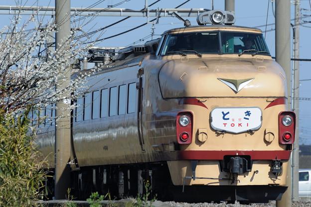 489系特急とき リバイバル運転(7)