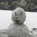 写真: 雪だるま作成中