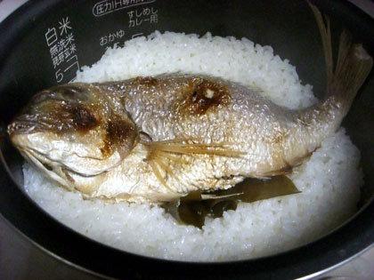 鯛飯、炊きあがりました。