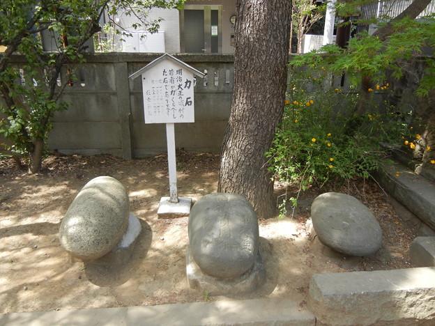 住吉神社-力石 (川崎市中原区木月)