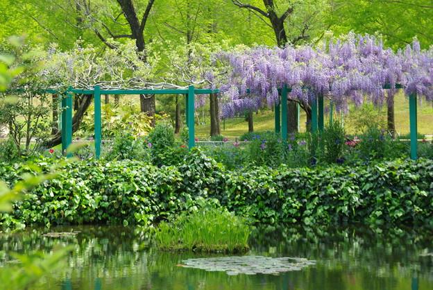 モネの庭/水の庭