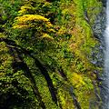 滝横にある水の流れる跡