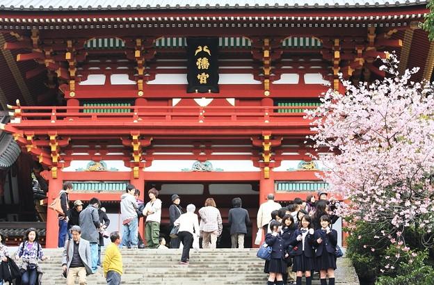 2010.03.05 鎌倉 八幡宮 あこがれる女学生